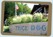 Trick Dog Art Gallery, Northern Michigan Regional Art in Elberta Michigan